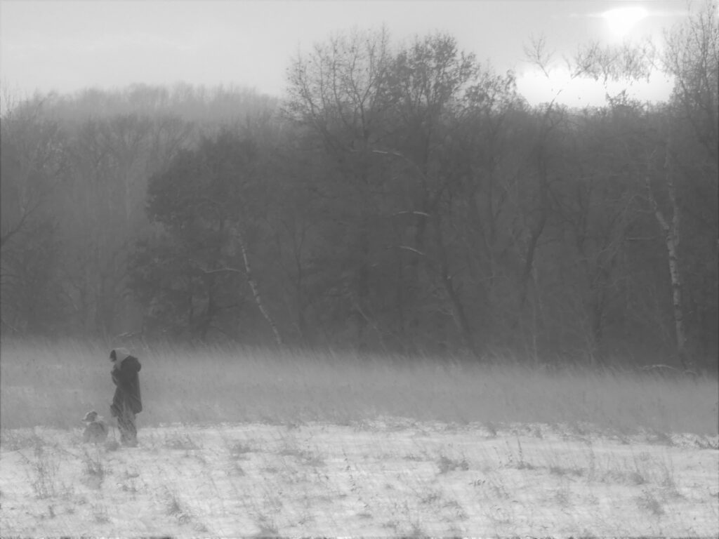 b&w photo of woman and dog in park